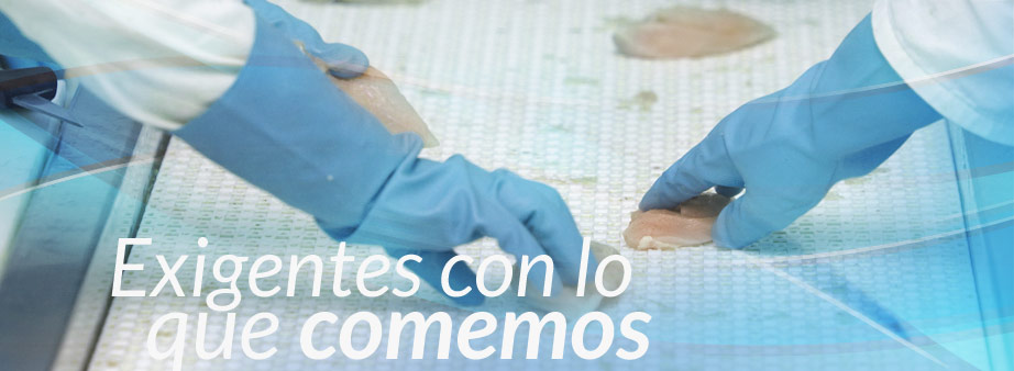 https://www.hiladosbiete.com/wp-content/uploads/2013/11/ALIMENTARIA2.jpg