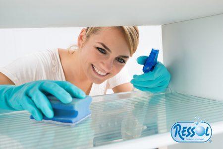 Articulos para limpiar la nevera